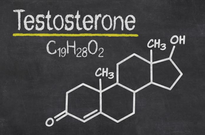 Wie wirkt sich das Testosteron auf Muskelaufbau aus?
