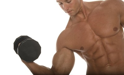 Muskelaufbau Hypertrophie