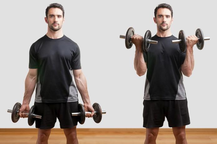 Sportler mit Kurzhanteln zeigt den Ablauf der Bizeps-Curls
